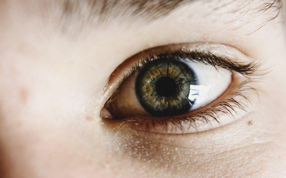 Leren doe je met je ogen