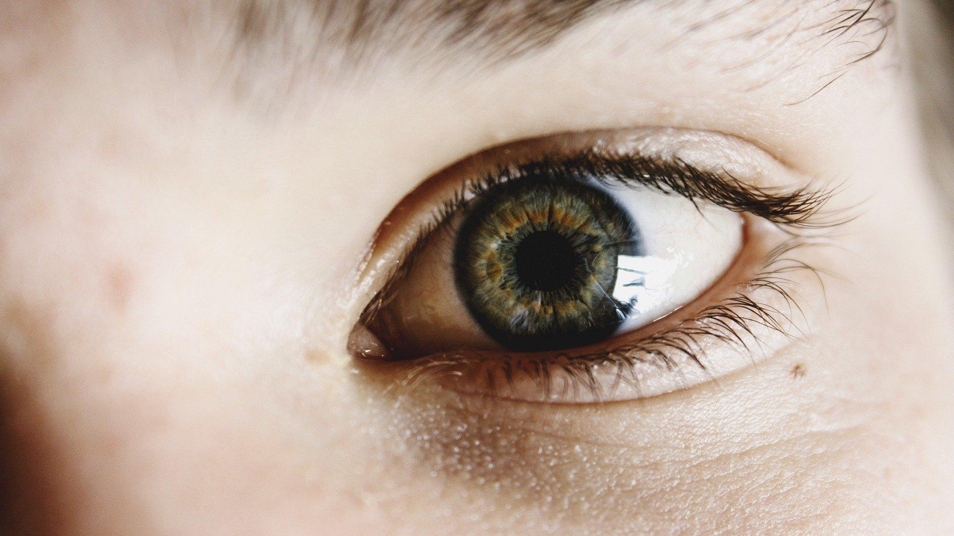 Leren doe je met je ogen, de basis voor leren is een goede werking van de ogen